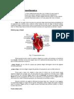 Elemente_de_hemodinamica.doc