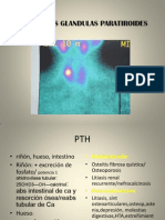 cir+endoc+pt.ppt97-2003
