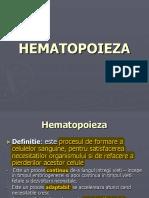 1.Hematopoieza