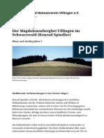 Der Magdalenenbergbei Villingen Im Schwarzwald (Konrad Spindler) _ Geschichts- Und Heimatverein Villingen e