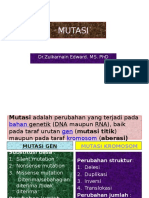 3.Mutasi Gen