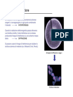 52923-Interferenza e diffrazione.pdf