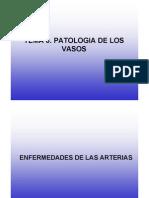 Patología de los vasos