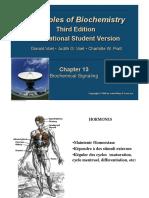 BC0103 ch13.pdf