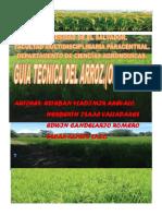 GUIA TECNICA DEL ARROZ.pdf