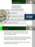 5.Invertebrados