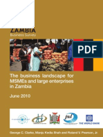 The Business Landscape for MSMEs and Large Enterprises in Zambia - ZBS July 2010