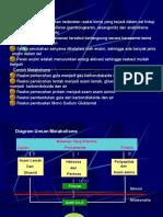 Metabolisme 1-PSIK
