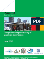 The Profile and Productivity of Zambian Business Report- ZBS June 2010