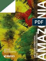 Amazônia - Olhar Territorial Para o Desenvolvimento