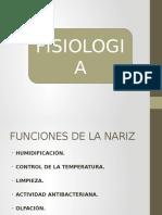 Fisiologia de La Nariz
