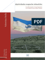 Subjetividades Mapuche-tehuelche Web