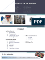 Grupo I.I. - Presentación- Producción Microbiana de Enzimas de Interés Industrial