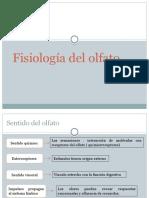 Fisiologia Del Olfato-s