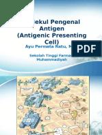 3. Molekul Pengenal Antigen