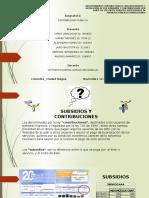 PROCEDIMIENTOS CONTABLES SOBRE SUBSIDIOS Y CONTRIBUCIONES EN LAS EMPRESAS DE SERVICIOS PÚBLICOS DOMICILIARIOS