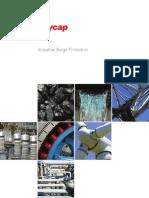 Raycap Industrial Brochure