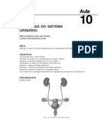 Texto_fisiologiaRenal(aula10)