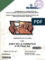 audit formation.pdf