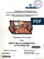 audit formation.pdf
