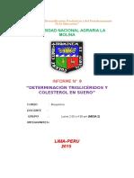 Inf Lab Bioquimica 9