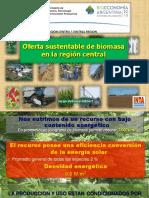 3 Oferta Sustentable de Biomasa en La Región Central Jorge Hilbert