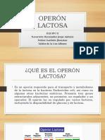 Operón Lactosa