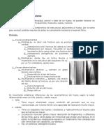 16. Generalidades de Fractura