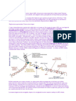Replicación de ADN