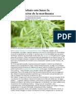 AL -El Caribe Debate Este Lunes La Despenalización de La Marihuana