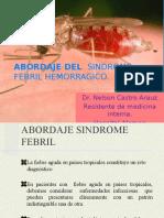 abordaje-del-sindrome-febril-hemorragico.pptx
