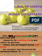 gooseberrypptenglish-140502060319-phpapp01