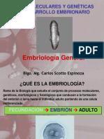 Bases Moleculares y Geneticas Del Embrion