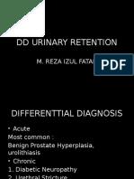 Css Dd Urinary Retention