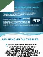 LAS BASES DE LA CONDUCTA SOCIAL.pptx