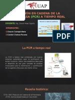 PCR a tiempo real