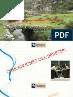 SEMANA N° 03- CONCEPCIONES DEL DERECHO