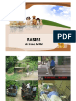 Rabies Ppt