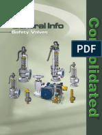 Safety Valve Brochure.pdf