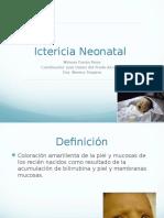 20110407 Ictericia Neonatal