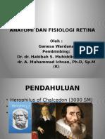 Anatomi dan Fisiologi Retina