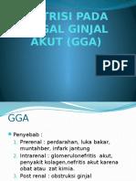 NUTRISI PADA GAGAL GINJAL AKUT (GGA) (2).pptx