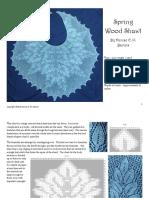 Shawl Pattern v12