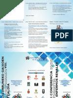 TRIPTICO VIII CONFERENCIA.pdf