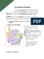 Guía de Estudio y Ejercicios Meiosis Corregida