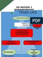 Struktur Trias Uks