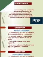 exposicion parasitos