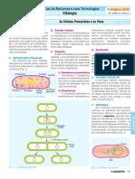 C3_CURSO_B_PROF_BIOLOGIA.pdf