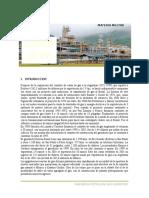 Contrato de Compra y Venta de Gas Natural Al Brasil