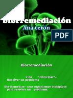 preseentacion-biorremediacion
